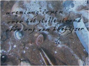 Haiga Tini Strand Hoefijzer