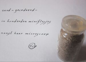 Haiku Haiga Zand gecodeerd Tini Haartsen-Slappendel
